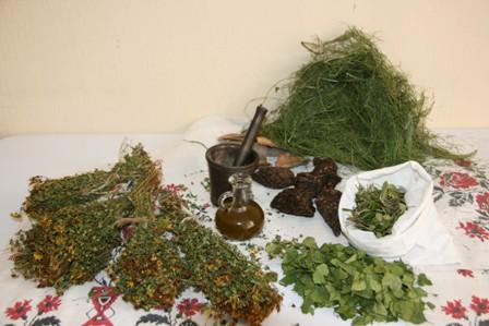 лечение радикулита дома травами